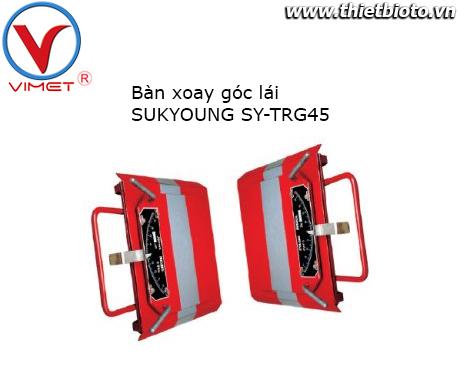 Bộ đĩa xoay cho kiểm tra góc lái Sukyoung TRG45